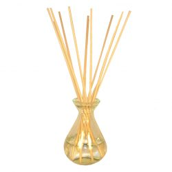 Clear Glass Reed Diffuser Bottle & 10 Reeds