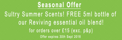 Seasonal Special Offer